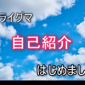 自己紹介 マイニング FIL ZIPANGFIL IMアカデミー TLC IBH AVA NV